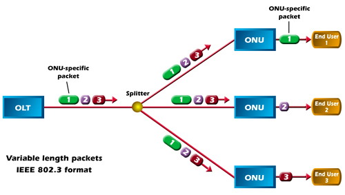 PON network(EPON and GPON)