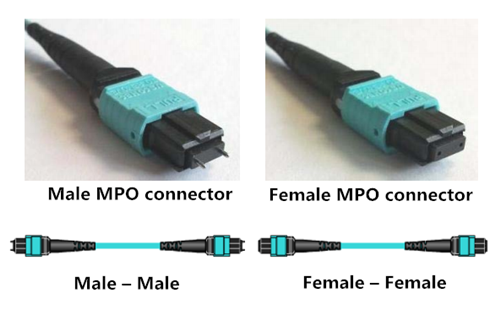 Male-or-Female-MTP-trunk-Cable